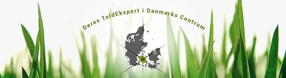 Dansk toldbehandling